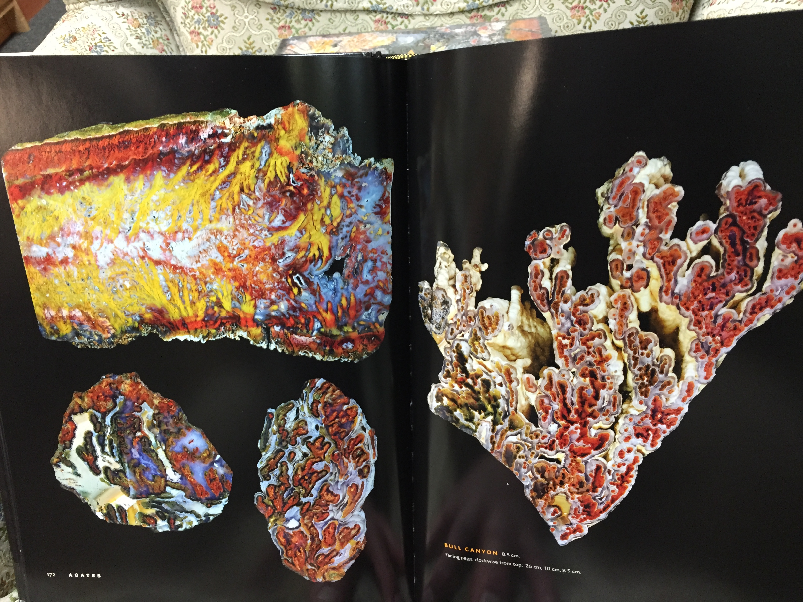 Image for Agates: The Pat McMahan Collection