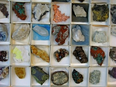 Wide Variety of Collectible Specimens